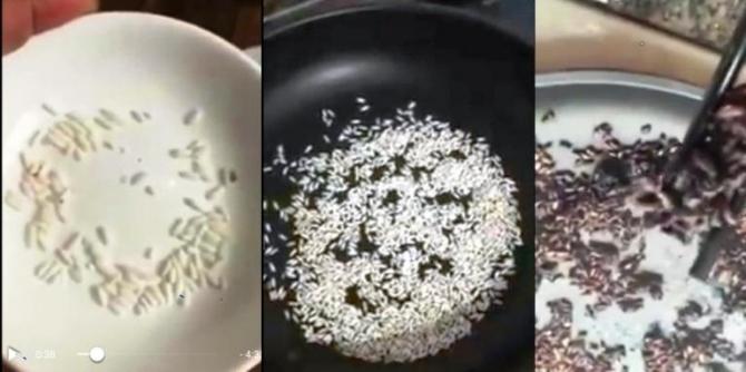 Gạo nghi là hạt nhựa có mùi khét sau khi rang
