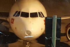 Máy bay lõm đầu vì va phải chim