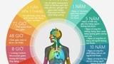 Điều gì xảy ra nếu ngừng hút thuốc lá?