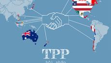 Đàm phán TPP từng diễn ra ở Việt Nam khi nào?