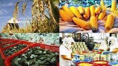 TPP: Thách thức đối với doanh nghiệp vừa và nhỏ