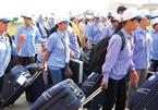 Chiếm 70% dân số Việt: 'lao động rẻ' là sự đau đớn