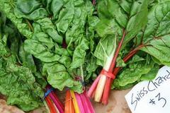Dân Hà thành rủ nhau trồng rau cải... lạ