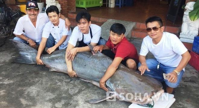 'Thủy quái' Campuchia 210kg về Sài Gòn vào quán nhậu