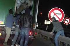 Người tị nạn liều lĩnh trốn trong xe chở gấu