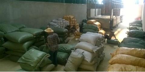 Kiểm tra tái xuất 65 tấn dược liệu nhập từ Trung Quốc