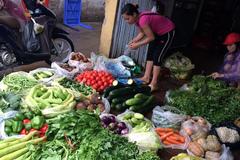 22% mẫu rau ở Hà Nội có thuốc gây ngộ độc
