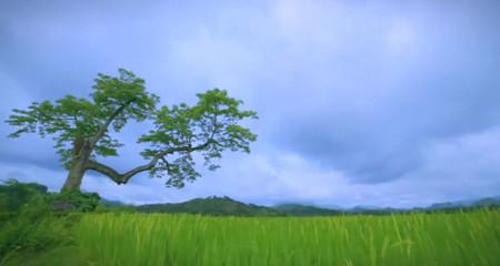 Việt Nam tuyệt đẹp trên kênh truyền hình nước Anh