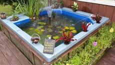 Khéo đặt bể cá mini cho ngoại thất thêm cuốn hút