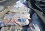 Kinh dị làm bột nêm bằng 10 tấn xương động vật có giòi