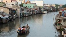 'Bát cơm vàng' của Việt Nam đang biến mất