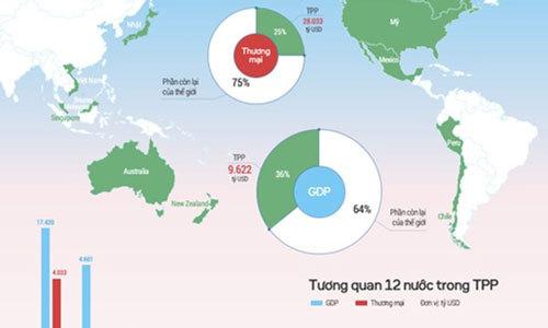 Công bố toàn văn TPP: 'Còn mờ ảo lắm'