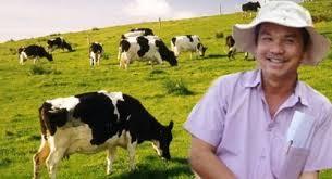Bầu Đức xót xa: Dân Việt ăn thịt bò đắt nhất thế giới