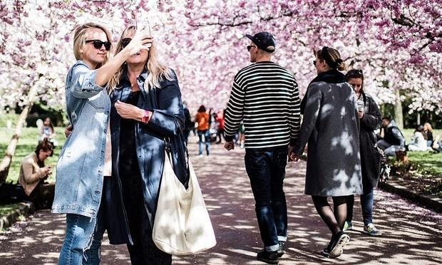 sức khỏe, suc khoe, Facebook, Đan Mạch, mạng xã hội, mang xa hoi