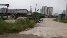 Tháp dầu khí 102 tầng tại Hà Nội thành bãi thả trâu