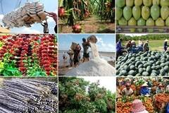 Sau 30 năm, tổng kim ngạch xuất khẩu ngành nông nghiệp tăng 63 lần