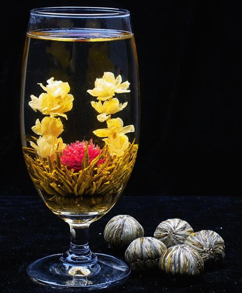 Gà ăn chất độc vàng ô, rau muống trồng nghĩa địa