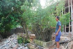 Chuyện lạ Thái Bình: Khối tiền chục tỷ để tạm bờ ao