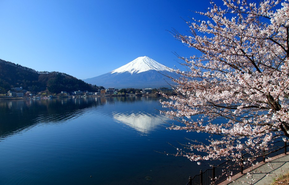 Nhật Bản, samurai, hoa anh đào, Tokyo, Conan, Naruto, Doraemon