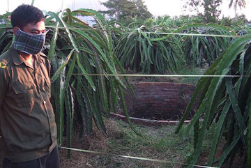 Bí ẩn xác nam thanh niên dưới giếng trong vườn thanh long