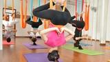 Treo mình trên võng lụa đặc biệt để tập yoga bay