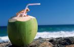 Ai không nên uống dừa tươi mỗi ngày?