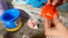 Ngâm cá vào hóa chất, tăng cân gấp rưỡi