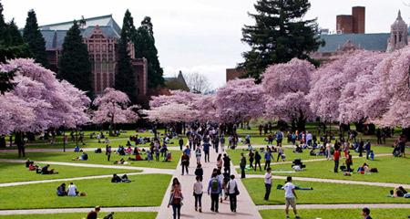 11 trường đại học Mỹ đẹp mê hồn