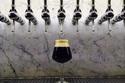 Cách đơn giản để kiểm tra cốc uống bia sạch hay bẩn