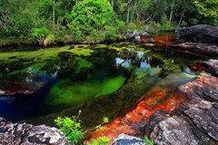 Cận cảnh sông ngũ sắc đẹp mê hồn, độc nhất vô nhị thế giới