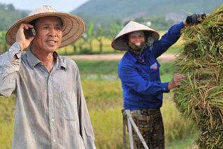 Sự thật ngành siêu lợi nhuận số 1 Việt Nam