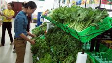 Mở hàng thực phẩm sạch: Tôi chỉ cần 20 triệu