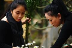 8 kỹ năng làm mẹ chồng của con gái PGS Văn Như Cương