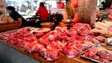 Lợn nuôi chất cấm tạo nạc bán giá cao vẫn đắt hàng