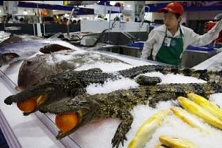 Siêu thị bán cá sấu đông lạnh nguyên con