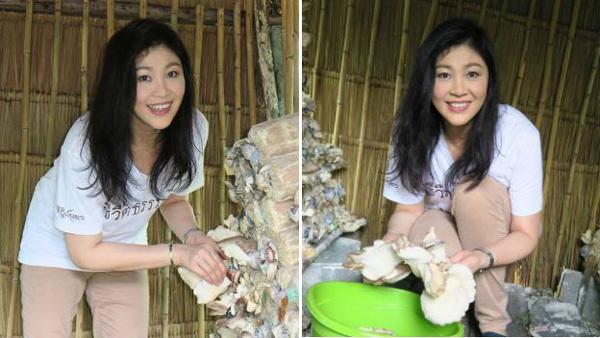 Sức khỏe, nữ thủ tướng Thái Lan, Yingluck Shinawatra, bí quyết xinh đẹp, rau sạch, chống ung thư, tim mạch