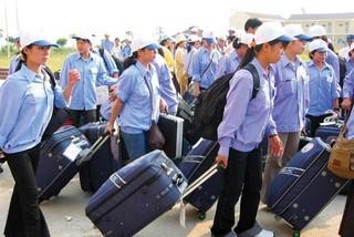 Không cho người Nghệ An, Thanh Hóa đi lao động ở Hàn Quốc?