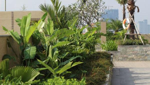 Sân vườn chung cư, ban công đẹp hứng nước tiểu hàng xóm