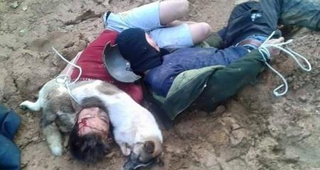 Hai 'cẩu tặc' bị dân đánh, trói cùng xác chó kéo lê trên đường