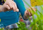 Sẽ thêm vi chất vào muối ăn, nước mắm của người Việt