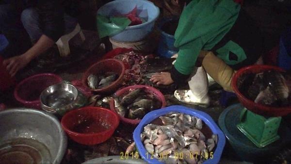 chợ cá ươn thối, chợ cá, cá ươn thối, phù phép, hôi thối, chợ-cá-ươn-thối, chợ-cá, cá-ươn-thối, phù-phép, hôi-thối