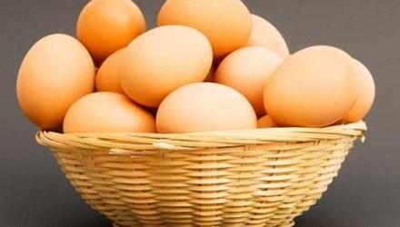 ăn trứng, lợi ích của ăn trứng, ăn trứng giảm rụng tóc