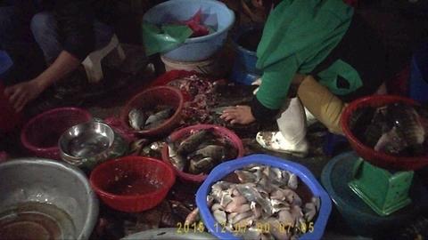 Thâm nhập thủ phủ chợ cá ươn, thối giữa lòng Thủ đô
