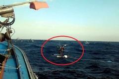 Tàu cá Quảng Ngãi bị tàu lạ đâm chìm trên biển