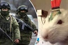 Xem vũ khí chống IS mới của Putin
