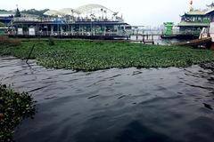 Chính quyền 'né' báo chí, mặc Hồ Tây thành... sông Tô Lịch