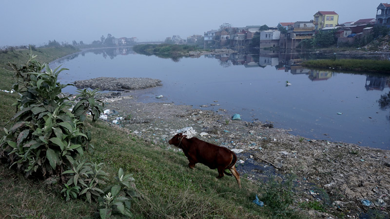 Cảnh ngang nhiên 'bức tử' dòng sông Ngũ Huyện Khê