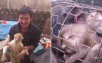 Vụ giết khỉ đăng Facebook: Triệu tập 5 đối tượng