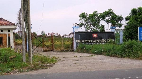 Sự thật nợ nần của đại gia Cà Mau mời Mr Đàm hát đám cưới 2 tỷ