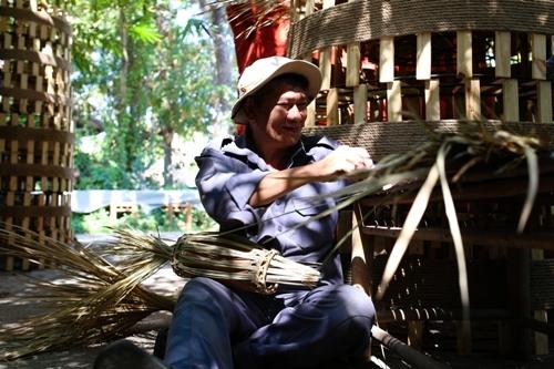 khỉ, đường hoa Tết, Bính Thân, đường hoa Nguyễn Huệ